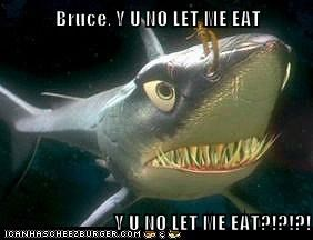 Bruce, Y U NO LET ME EAT  Y U NO LET ME EAT?!?!?!