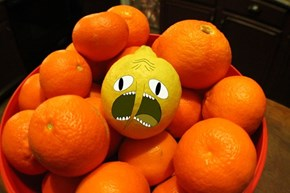 Earl of Lemongrab IRL