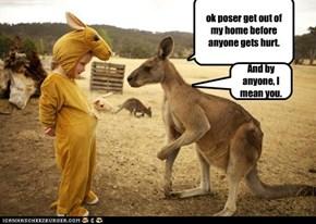 kangaroo poser