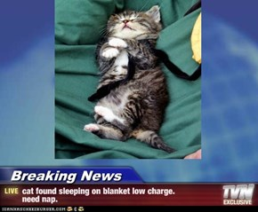 Breaking News - cat found sleeping on blanket low charge. need nap.
