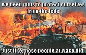 we need guns to protect ourselves from the feds   Just like those people at waco did.