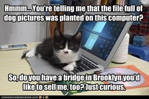 Kitteh has busted you!