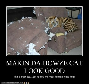 MAKIN DA HOWZE CAT LOOK GOOD