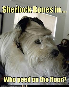 No Sh*T Sherlock?