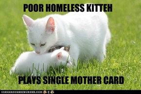 We Can Haz Shelter Allowance?