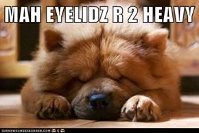 MAH EYELIDZ R 2 HEAVY