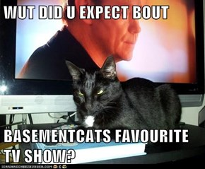 WUT DID U EXPECT BOUT  BASEMENTCATS FAVOURITE TV SHOW?