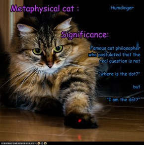 Metaphysical cat :