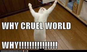 WHY CRUEL WORLD WHY!!!!!!!!!!!!!!!