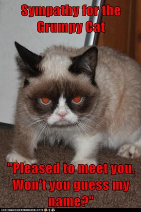 "Sympathy for the Grumpy Cat  ""Pleased to meet you.  Won't you guess my name?"""