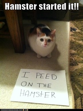 Hamster started it!!