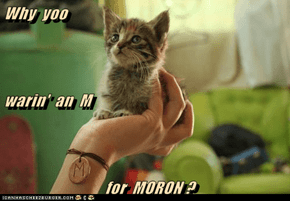 Why  yoo warin'  an  M   for  MORON ?