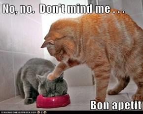 No, no.  Don't mind me . . .  Bon apetit
