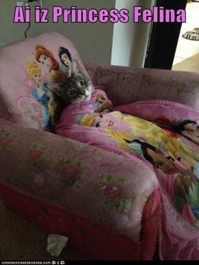 Ai iz Princess Felina