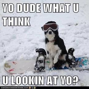 YO DUDE WHAT U THINK  U LOOKIN AT YO?