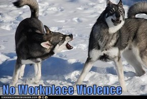 No Workplace Violence