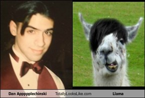 Dan Appppplechinski Totally Looks Like Llama
