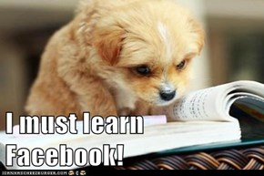 I must learn Facebook!