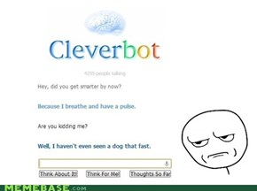 Cleverbot is still dumb