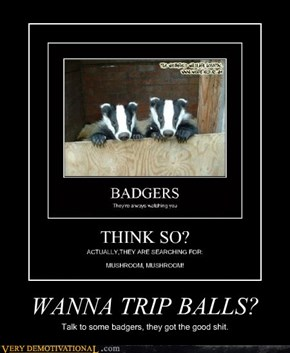 WANNA TRIP BALLS?