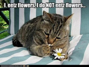 I  eetz flowers, I do NOT eetz flowers...