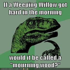"If a Weeping Willow got hard in the morning  would it be called a ""mourning wood?"""