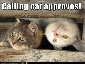 Ceiling cat approves!