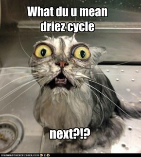 What du u mean driez cycle