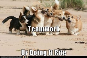 Teamwork Ur Doing It Rite