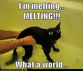 I'm melting... MELTING!!!  What a world...