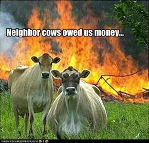 Mob Cows
