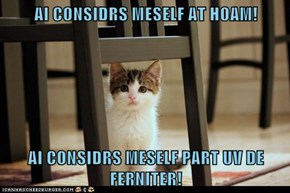 AI CONSIDRS MESELF AT HOAM!  AI CONSIDRS MESELF PART UV DE FERNITER!