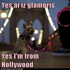 Yes ai iz glamoris  Yes I'm from Hollywood