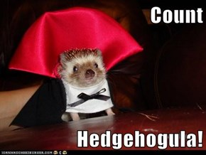 Count  Hedgehogula!
