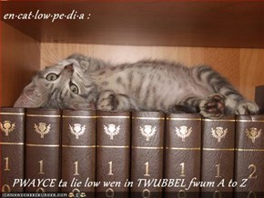 en·cat·low·pe·di·a :     PWAYCE ta lie low wen in TWUBBEL fwum A to Z