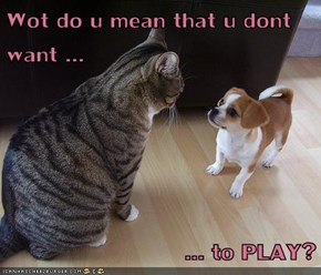 Wot do u mean that u dont want ...  ... to PLAY?