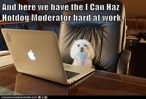 And here we have the I Can Haz Hotdog Moderator hard at work.