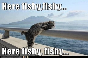 Here fishy,fishy...  Here fishy, fishy...