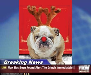 Breaking News - Max Has Been Found!Alert The Grinch Immediately!!