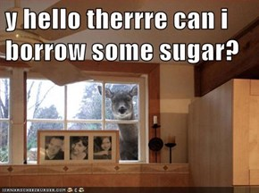 y hello therrre can i borrow some sugar?