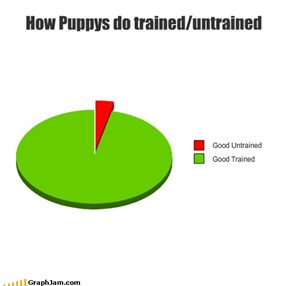 How Puppys do trained/untrained