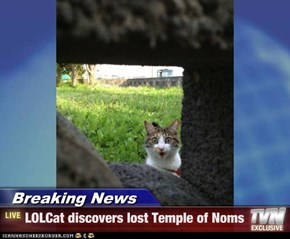 Breaking News - LOLCat discovers lost Temple of Noms