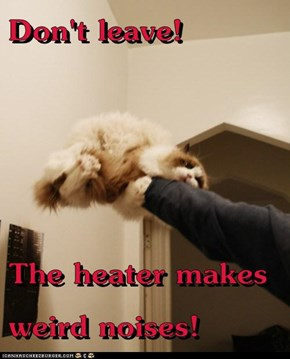 Don't leave!  The heater makes weird noises!