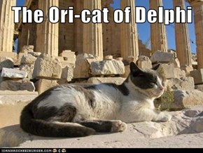 The Ori-cat of Delphi