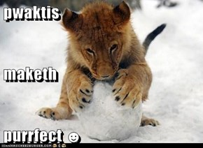pwaktis maketh purrfect ☻