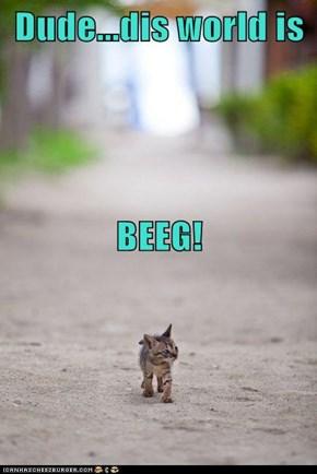 Dude...dis world is BEEG!
