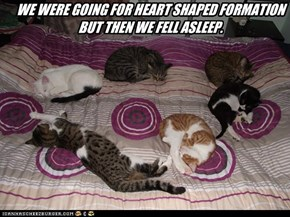 WE WERE GOING FOR HEART SHAPED FORMATION BUT THEN WE FELL ASLEEP.