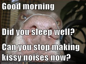 Good morning Did you sleep well? Can you stop making kissy noises now?