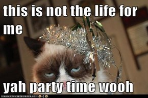 this is not the life for me  yah party time wooh