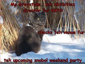 Ms Greystoke, teh aktibitiez director for KKPS checks teh venue fur teh upcoming snobol weekend party